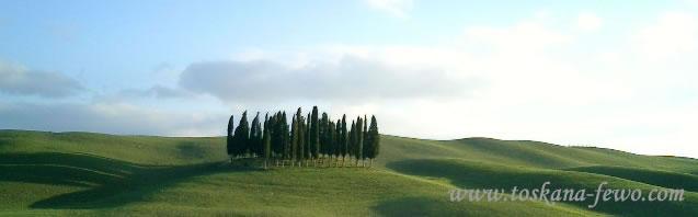 Toskana, Ferienwohnungen u. Ferienhäuser